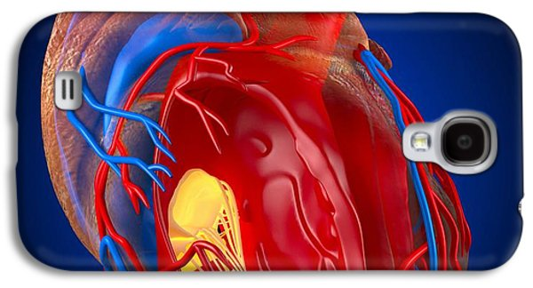 Right Side Galaxy S4 Cases - Structure Of A Human Heart, Artwork Galaxy S4 Case by Roger Harris