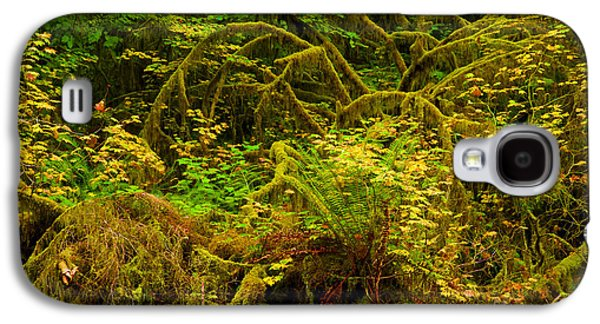 Temperate Rain Forest Galaxy S4 Case by Adam Jewell