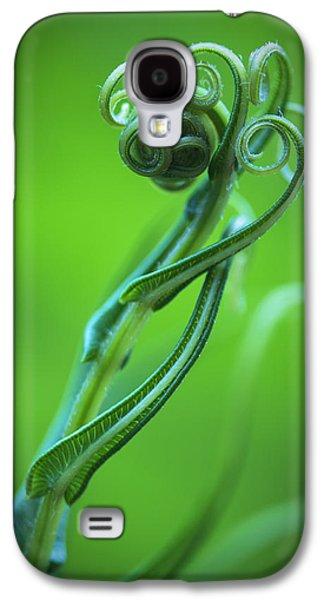 Tendrils Galaxy S4 Cases - Tendrils Galaxy S4 Case by Zoe Ferrie