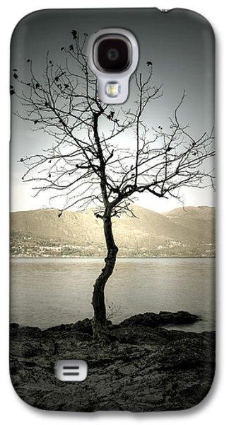 Winter Trees Photographs Galaxy S4 Cases - Winter Tree Galaxy S4 Case by Joana Kruse