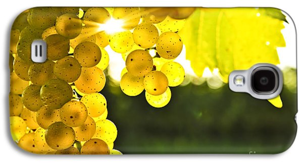 Chardonnay Galaxy S4 Cases - Yellow grapes Galaxy S4 Case by Elena Elisseeva