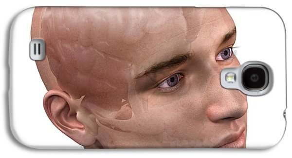 Human Health Galaxy S4 Cases - Head Anatomy, Artwork Galaxy S4 Case by Sciepro