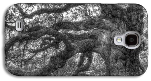 Oaks Galaxy S4 Cases - Angel Oak Tree Charleston SC Galaxy S4 Case by Dustin K Ryan