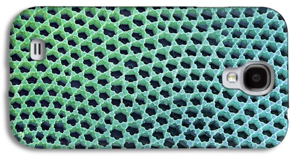 Striae Galaxy S4 Cases - Diatom Cell Wall, Sem Galaxy S4 Case by Steve Gschmeissner