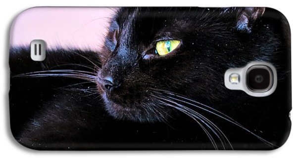 Witch Halloween Cat Wicca Galaxy S4 Cases - Green Eyes Galaxy S4 Case by Michelle Milano