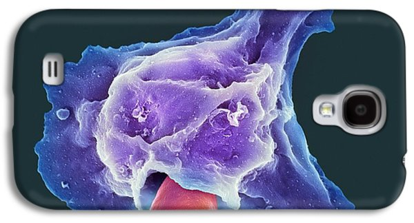 Engulfing Galaxy S4 Cases - Neutrophil Engulfing Thrush Fungus, Sem Galaxy S4 Case by