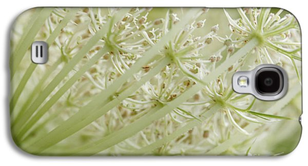 Maine Meadow Galaxy S4 Cases - Queen Annes Lace Galaxy S4 Case by Cindi Ressler