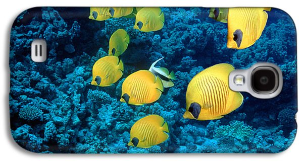 Under Water. Nature Galaxy S4 Cases - Golden Butterflyfish Galaxy S4 Case by Georgette Douwma