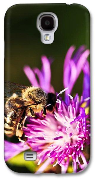 Feeding Galaxy S4 Cases - Honey bee Galaxy S4 Case by Elena Elisseeva