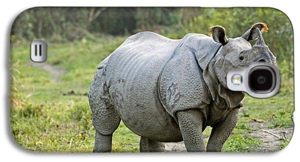 One Horned Rhino Galaxy S4 Cases - Indian Rhinoceros Galaxy S4 Case by Tony Camacho