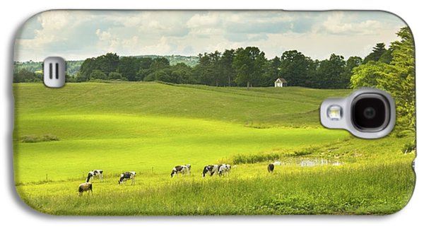 Maine Meadow Galaxy S4 Cases - Cows Grazing On Grass In Farm Field Summer Maine Galaxy S4 Case by Keith Webber Jr