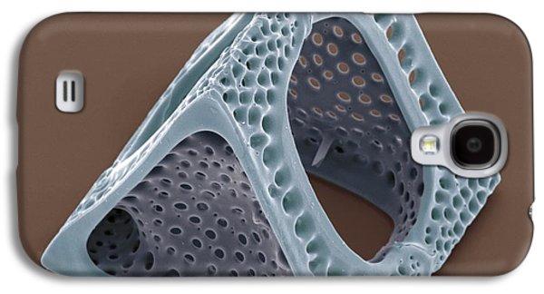 Plankton Galaxy S4 Cases - Diatom, Sem Galaxy S4 Case by Steve Gschmeissner