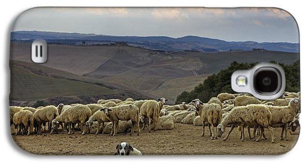 Cattle Dog Galaxy S4 Cases - Flock Of Sheep Galaxy S4 Case by Joana Kruse
