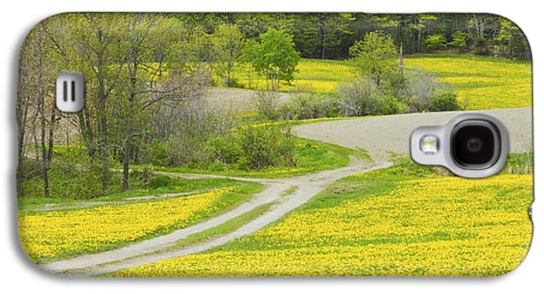Maine Roads Galaxy S4 Cases - Spring Farm Landscape With Dandelion bloom in Maine Galaxy S4 Case by Keith Webber Jr