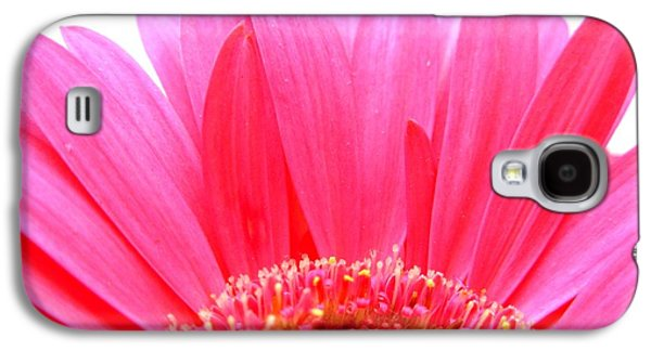 Original Photographs Galaxy S4 Cases - 5538c Galaxy S4 Case by Kimberlie Gerner