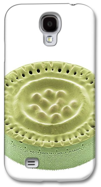 Photosynthetic Galaxy S4 Cases - Diatom, Sem Galaxy S4 Case by Steve Gschmeissner