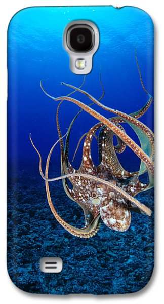 Underwater Photos Galaxy S4 Cases - Hawaii, Day Octopus Galaxy S4 Case by Dave Fleetham - Printscapes