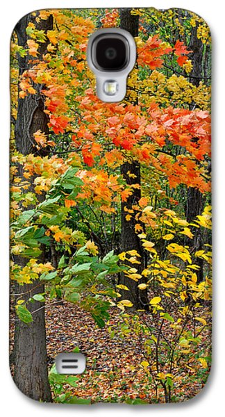 A Blustery Autumn Day Galaxy S4 Case by Frozen in Time Fine Art Photography