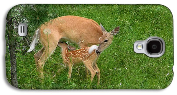 A Mother's Love - Doe And Fawn Galaxy S4 Case by Christine Till