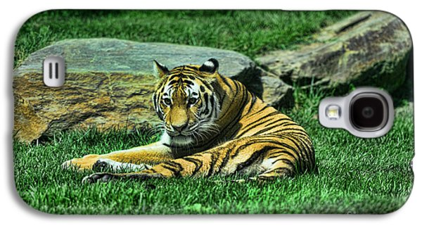 The Tiger Galaxy S4 Cases - A Tigers Gaze Galaxy S4 Case by Paul Ward