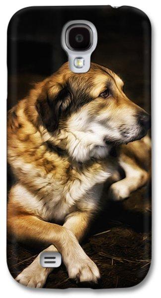 Dogs Digital Art Galaxy S4 Cases - Adam - The Loving Dog Galaxy S4 Case by Bill Tiepelman
