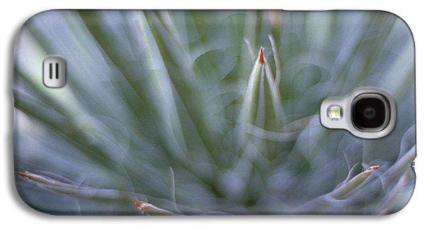 Splashy Art Galaxy S4 Cases - Agave Galaxy S4 Case by Marcio Faustino