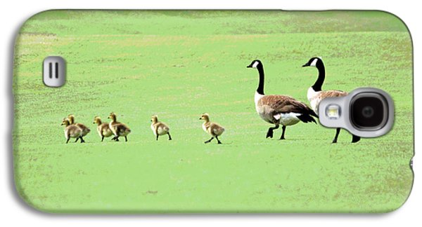 Geese Digital Art Galaxy S4 Cases - All in the Family II Galaxy S4 Case by Suzanne Gaff
