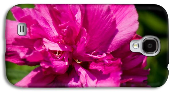 Althea Galaxy S4 Cases - Althea Blossom Galaxy S4 Case by Barry Jones
