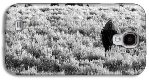 American Bison In Black And White Galaxy S4 Case by Sebastian Musial