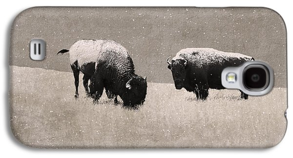 Recently Sold -  - Bison Digital Art Galaxy S4 Cases - American Bison Galaxy S4 Case by Ron Jones