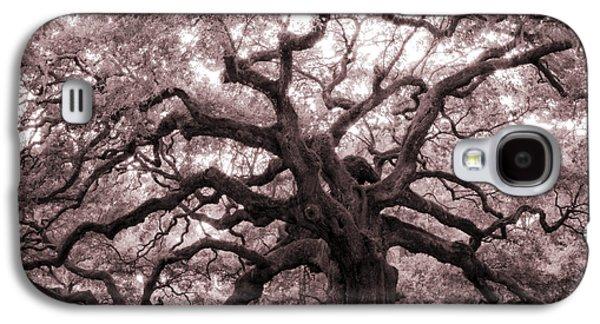 Oaks Galaxy S4 Cases - Angel Oak Tree Galaxy S4 Case by Dustin K Ryan