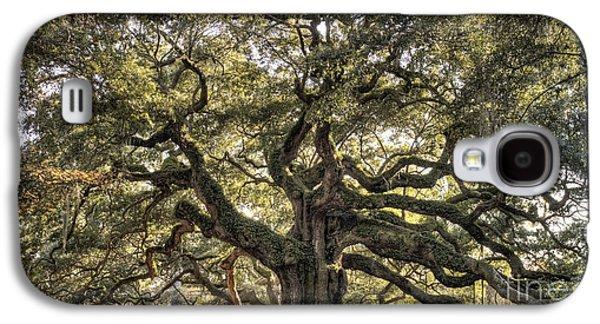 Oaks Galaxy S4 Cases - Angel Oak Tree Live Oak  Galaxy S4 Case by Dustin K Ryan