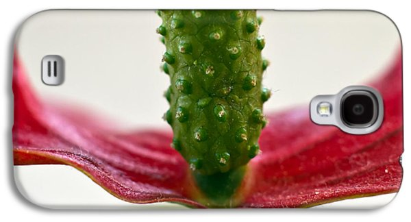 Abstract Forms Photographs Galaxy S4 Cases - Anthurium Galaxy S4 Case by Stylianos Kleanthous