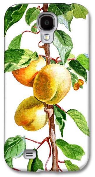 Harvest Art Galaxy S4 Cases - Apricots Galaxy S4 Case by Irina Sztukowski
