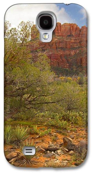 Stone Digital Art Galaxy S4 Cases - Arizona Outback 3 Galaxy S4 Case by Mike McGlothlen