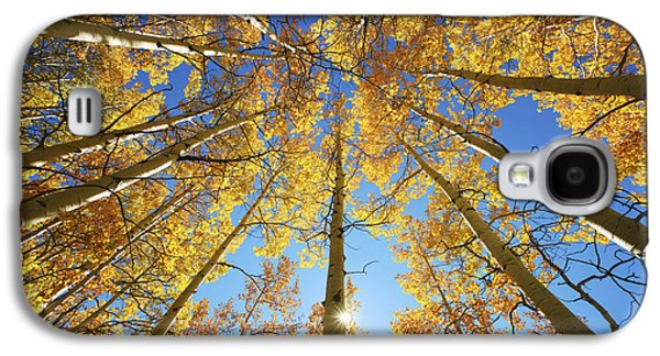 Nature Center Galaxy S4 Cases - Aspen Tree Canopy 2 Galaxy S4 Case by Ron Dahlquist - Printscapes
