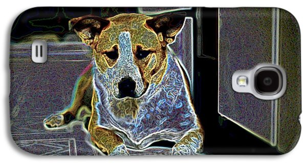 Australian Cattle Dog Boxer Mix Galaxy S4 Case by One Rude Dawg Orcutt