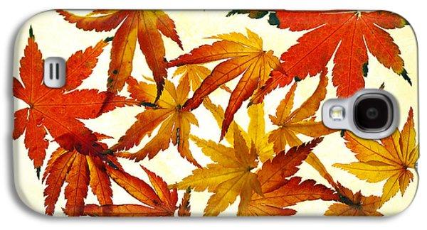 Autumn Leaf Galaxy S4 Cases - Autumn Flury Galaxy S4 Case by Rebecca Cozart