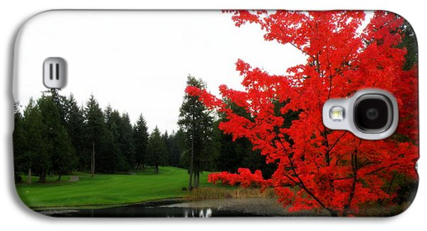 Autumn Landscape Glass Art Galaxy S4 Cases - Autumn Golf Course Galaxy S4 Case by Tanya  Searcy
