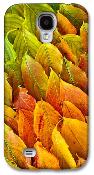 Gradient Galaxy S4 Cases - Autumn leaves arrangement Galaxy S4 Case by Elena Elisseeva