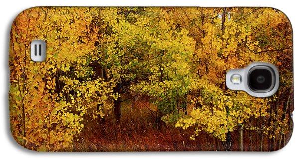 Nature Scene Mixed Media Galaxy S4 Cases - Autumn Palette Galaxy S4 Case by Carol Cavalaris