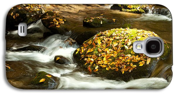 Autumn Stream Galaxy S4 Case by Lena Auxier