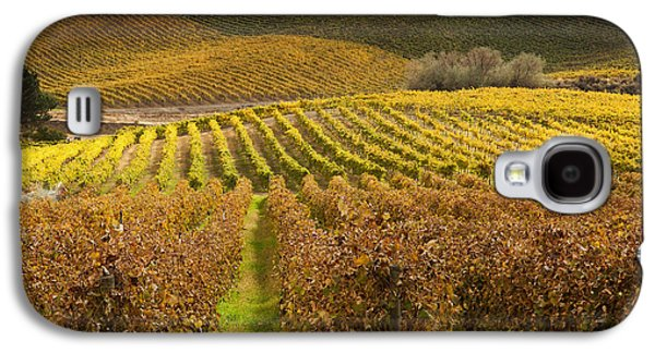 Grapevines Photographs Galaxy S4 Cases - Autumn Vines Galaxy S4 Case by Mike  Dawson