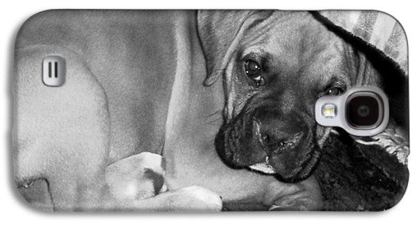Boxer Puppy Digital Art Galaxy S4 Cases - Baby Boxer Puppy Galaxy S4 Case by Tisha McGee