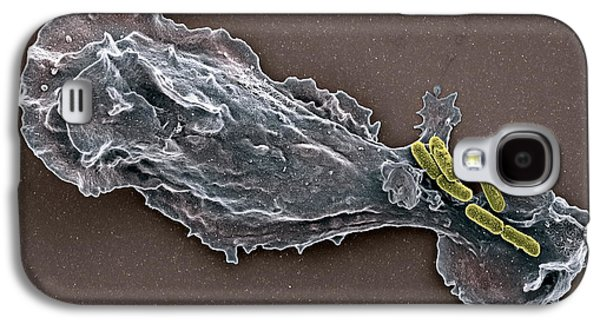 False-colour Galaxy S4 Cases - Bacteria And Neutrophil Cell, Sem Galaxy S4 Case by