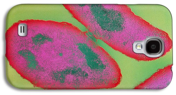 Tem Galaxy S4 Cases - Bacteria, Sexual Reproduction Galaxy S4 Case by Omikron