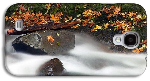 Maple Season Galaxy S4 Cases - Balance of the Seasons Galaxy S4 Case by Mike  Dawson