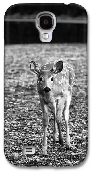 Game Photographs Galaxy S4 Cases - Bambi in Black and White Galaxy S4 Case by Sebastian Musial