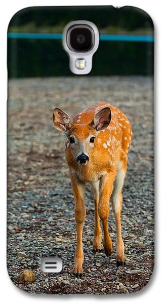 Landscapes Photographs Galaxy S4 Cases - Bambi Galaxy S4 Case by Sebastian Musial