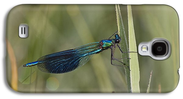 Demoiselles Galaxy S4 Cases - Banded Demoiselle Calopteryx Splendens Galaxy S4 Case by Konrad Wothe